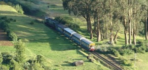 ooty-tourist-information
